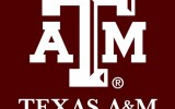 Texas A&amp;M University at Qatar to Graduate Its 400th New Engineer This Week